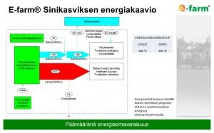 E-farm Sinikasviksen energiakaavio